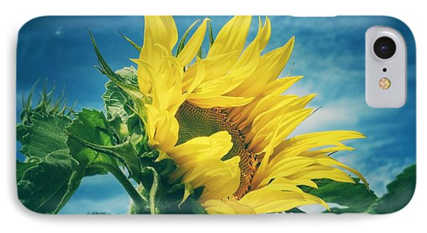 IPhone Case featuring the photograph Windblown  by Karen Stahlros
