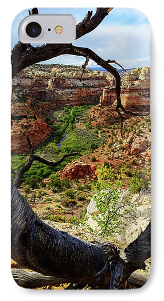 IPhone Case featuring the photograph Window by Chad Dutson