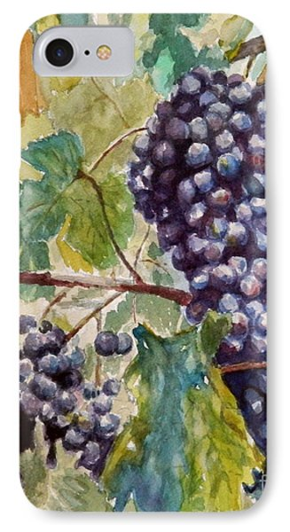 Wine Grapes IPhone Case by William Reed