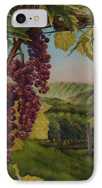 Wine Vineyard IPhone Case by Heidi E  Nelson