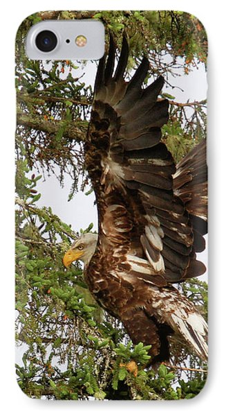 IPhone Case featuring the photograph Winging-it Up The Tree 1 by Debbie Stahre