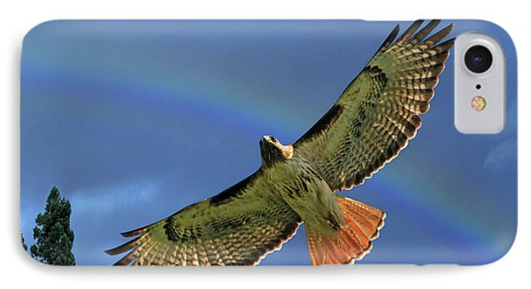 Wings 2 IPhone Case by Donna Kennedy