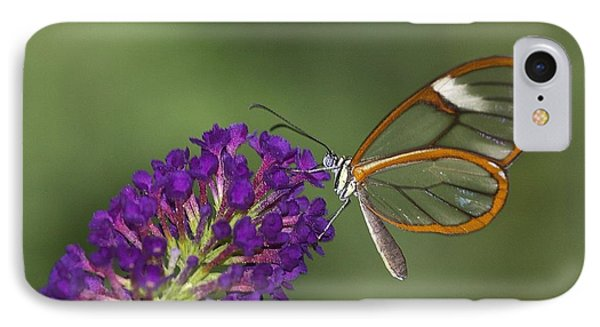 Wings Like Glass IPhone Case