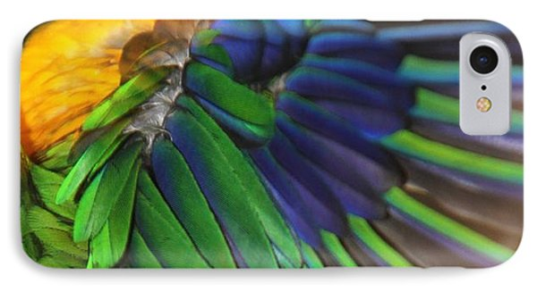 Wings Of A Conure IPhone Case by Andrea Lazar