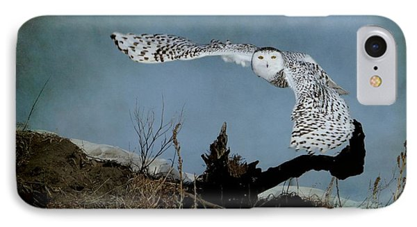 Wings Of Winter IPhone Case by Heather King