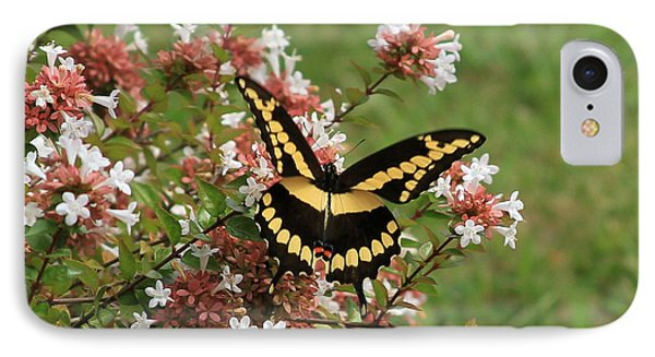 Wingspan Giant Swallowtail IPhone Case by Reid Callaway