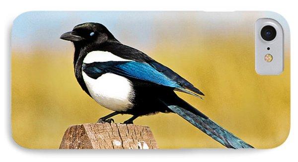 Winking Magpie Phone Case by Mitch Shindelbower