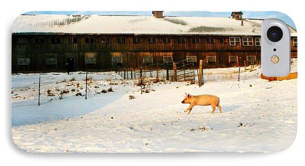 Winnie At Heartland Farm Sanctuary IPhone Case