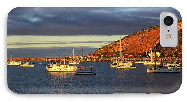 IPhone Case featuring the photograph Winter Afternoon Sun At Friendly Bay by Nareeta Martin