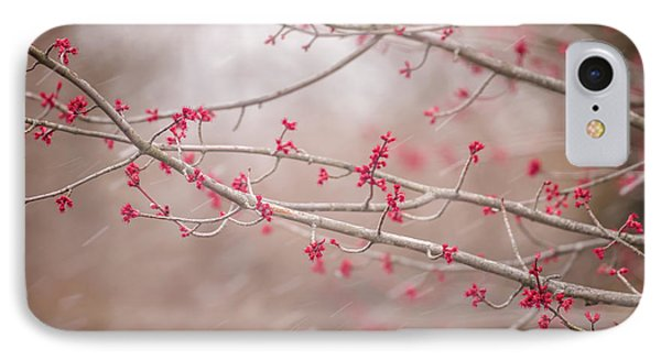 IPhone Case featuring the photograph Winter And Spring by Terry DeLuco