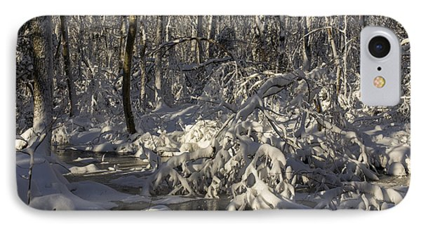 Winter At Borden Brook IPhone Case