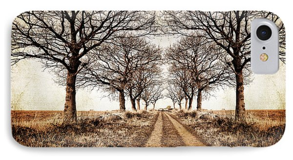 Winter Avenue IPhone Case by Meirion Matthias