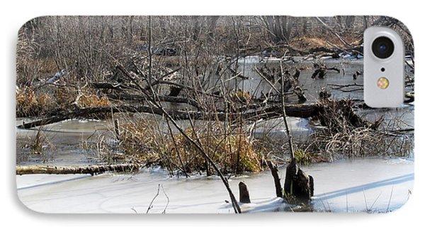 Winter Beaver Bog IPhone Case