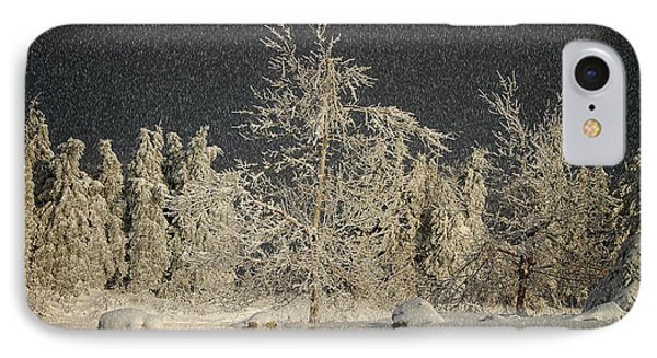 Winter Begins Phone Case by Lois Bryan
