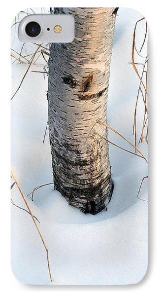 Winter Birch Phone Case by Bill Morgenstern