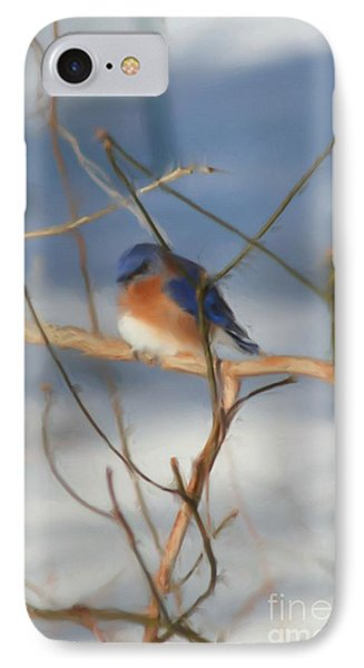 IPhone Case featuring the painting Winter Bluebird Art by Smilin Eyes  Treasures
