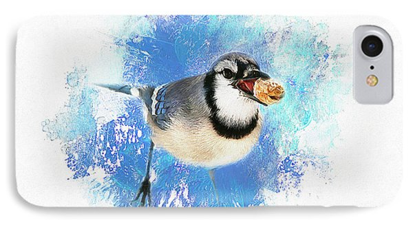 IPhone Case featuring the photograph Winter Bluejay by Darren Fisher