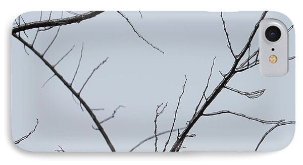 Winter Branches IPhone Case by Craig Walters