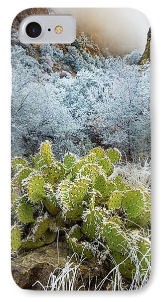 Winter Cacti IPhone Case by Inge Johnsson