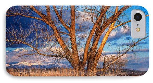 Winter Cottonwood Ranch Landscape Colorado IPhone Case by John Brink
