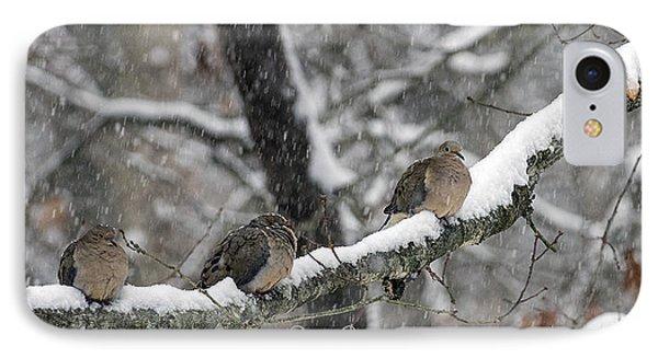 Winter Doves IPhone Case by Diane Giurco