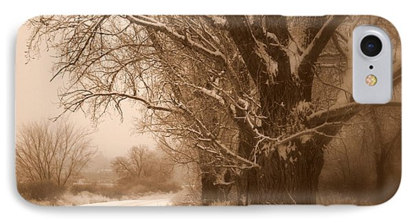 Winter Dream Phone Case by Carol Groenen