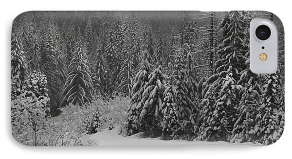 IPhone Case featuring the photograph Winter Fairy Tale by Yulia Kazansky
