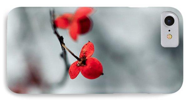 Winter Flower IPhone Case by Todd Klassy