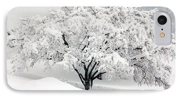 Winter Fluff IPhone Case by Richard Ortolano