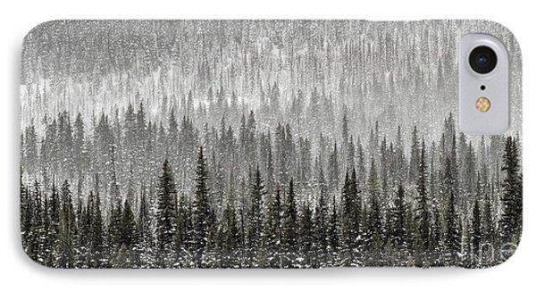 Winter Forest IPhone Case by Brad Allen Fine Art