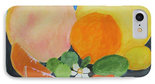 Winter Fruit Phone Case by Sandy McIntire