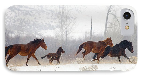 Winter Gallop IPhone Case by Mike  Dawson