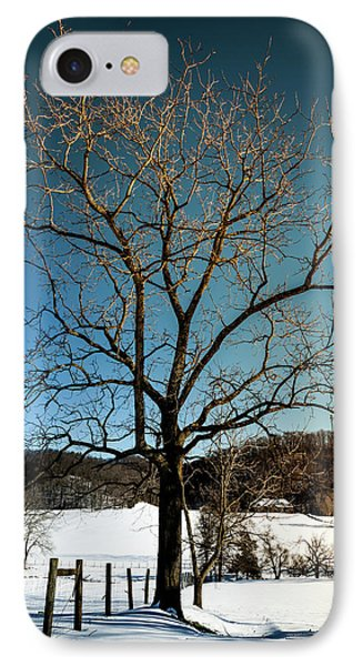 IPhone Case featuring the photograph Winter Glow by Karen Wiles
