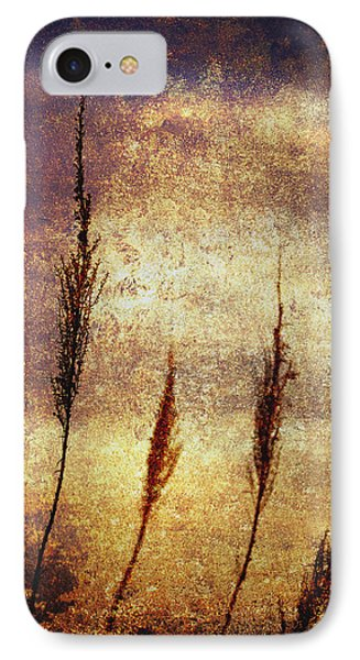 Winter Gold Phone Case by Skip Nall
