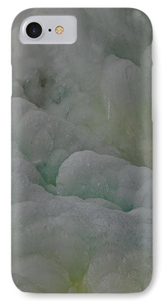 Winter Green IPhone Case