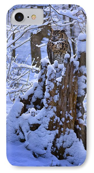 Winter Guest IPhone Case by Ron Jones