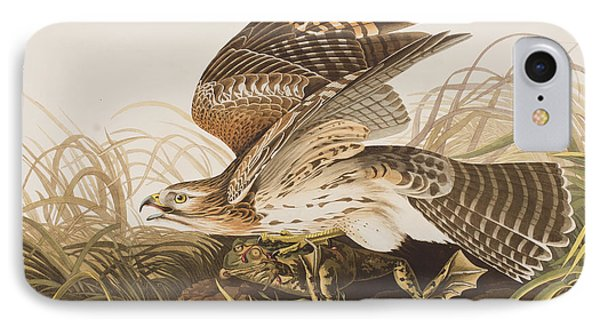 Winter Hawk IPhone 7 Case by John James Audubon