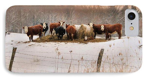 Winter Hay IPhone Case by Lori Deiter