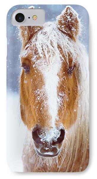 Winter Horse Portrait IPhone Case by Debi Bishop