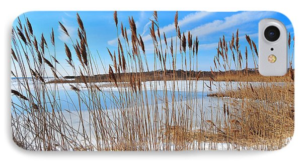 Winter In The Salt Marsh Phone Case by Catherine Reusch Daley
