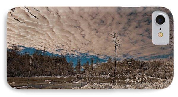 Winter In The Wetlands IPhone Case by John Harding