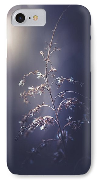 Winter Light IPhone Case by Shane Holsclaw