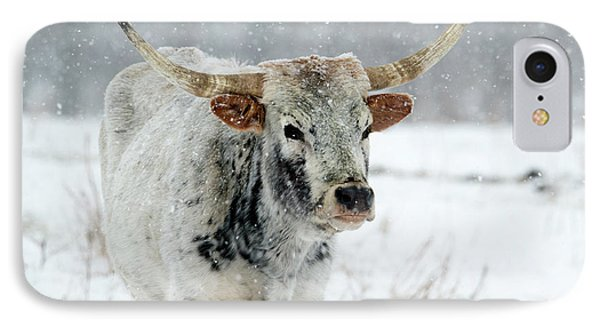 Winter Longhorn IPhone Case by Mike Dawson