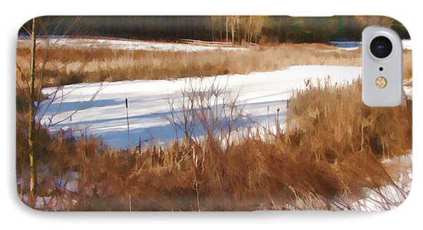 Winter Marsh IPhone Case by Betsy Zimmerli