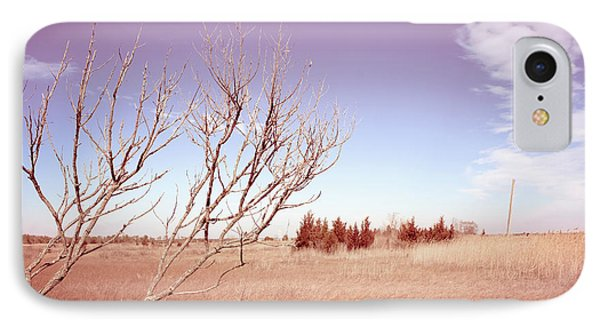 IPhone Case featuring the photograph Winter Marshlands by Colleen Kammerer