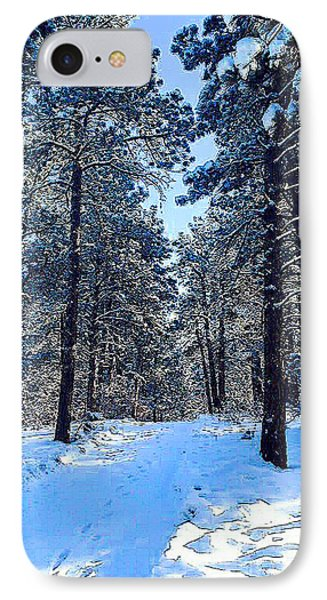 Winter Morning IPhone Case by Walter Chamberlain