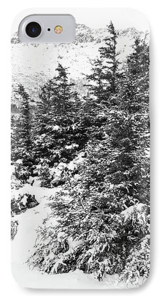 Winter Night Forest M IPhone Case