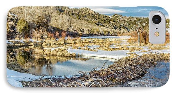 Winter On Beaver Swamp IPhone Case by Marek Uliasz