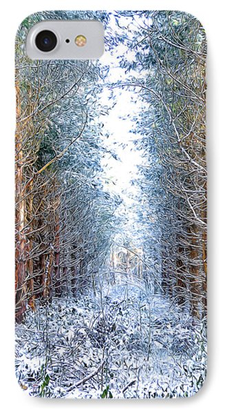 Winter Path Phone Case by Svetlana Sewell