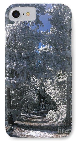 Winter Pathway Phone Case by Sandra Bronstein
